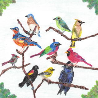 The Gathering, colored pencil drawing by Darren Olsen at The Draw