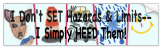Hazards and Limits Anti-Speeding Bumper Sticker, product at The Draw on Zazzle